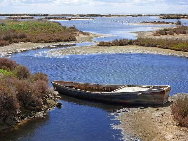 visitar el delta del ebro